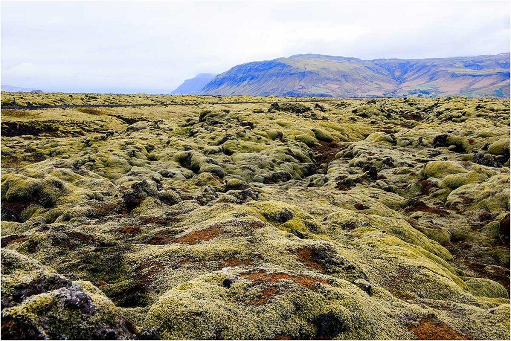 Tussen Vik en Kirkjubæjarklaustur (IJsland, mei 2016)