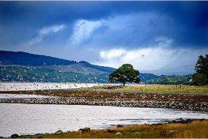 Loch Eil (Schotland, sep.2013)