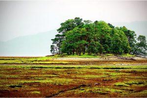 Loch Linnhe (Schotland, sep.2013)