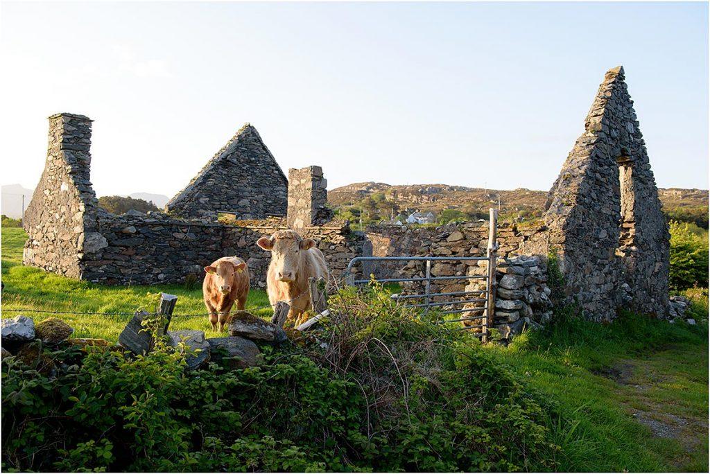 Renvyle, Connemara, County Galway