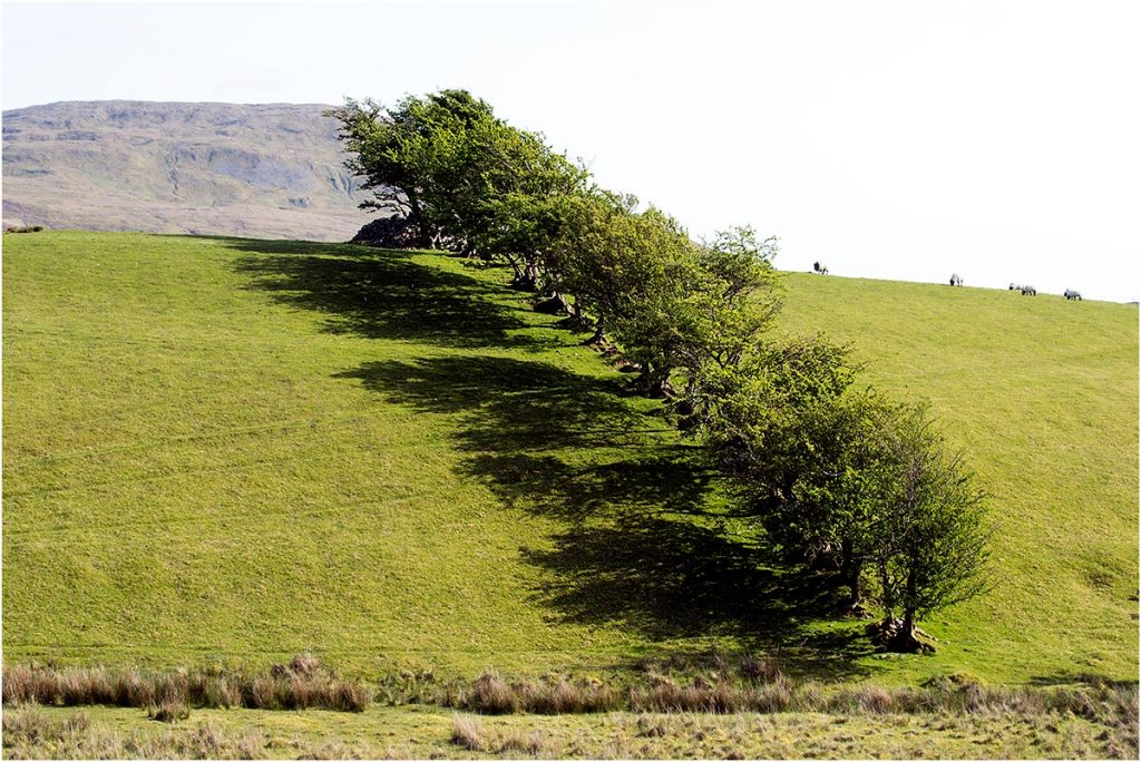 Joyce Country, County Galway