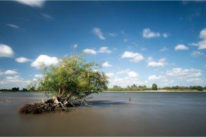 Ooij, Waaluiterwaard in de Ooijpolder (23-5-2020) Nikon D750; ISO100; 15sec.; f/11; 20mm. [ME0_0931]