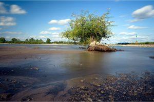 Ooij, Waaluiterwaard in de Ooijpolder (25-5-2020) Nikon D750; ISO100; 15sec.; f/11; 25 mm. [ME0_0965]