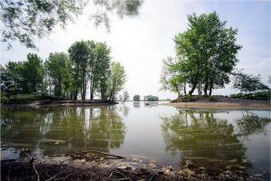 Reeserward, kolk in de Rijnuiterwaarden bij Rees (D) (2-6-2020) Nikon D750; ISO100; 15sec.; f/8; 16 mm. [JU0_1007]