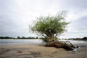 Ooij, Waalstrandje in de Ooijpolder (12-9-2020) Nikon D750; ISO-100; 20sec; f/11; 20mm [090_0390]