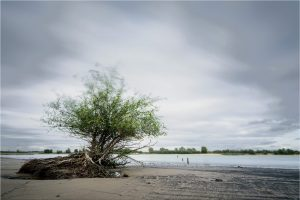 Ooij, Waalstrandje in de Ooijpolder (12-9-2020) Nikon D750; ISO-100; 50sec; f/11; 16mm [090_0414]
