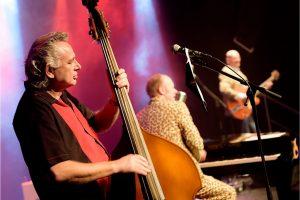 Killer and the Cool Cats @Dag van de Achterhoekse Popmuziek (12 dec.)  [AP0_0367]
