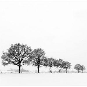 Winter, Vicarisweg Varsselder