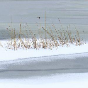 Winter, Engbergen-Gendringen