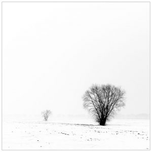 Winter, Netterden