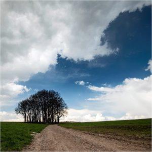 Barlo-Aalten, Ligterinkweg (12-4-2021) [104_2058]