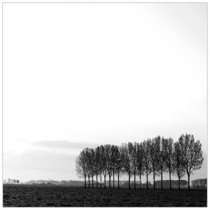 Giesbeek (2-5-2021) [105_2372ZW]