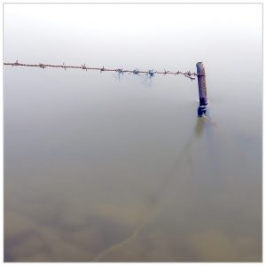 In de IJssel bij Bronkhorst (24-5-2021) [105_3370]